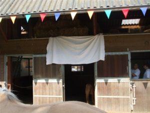 Onze kattenopvang is zover klaar dat we deze gaan openen. Wat voor verrassing zit er verstopt achter het doek?