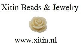 Xitin logo
